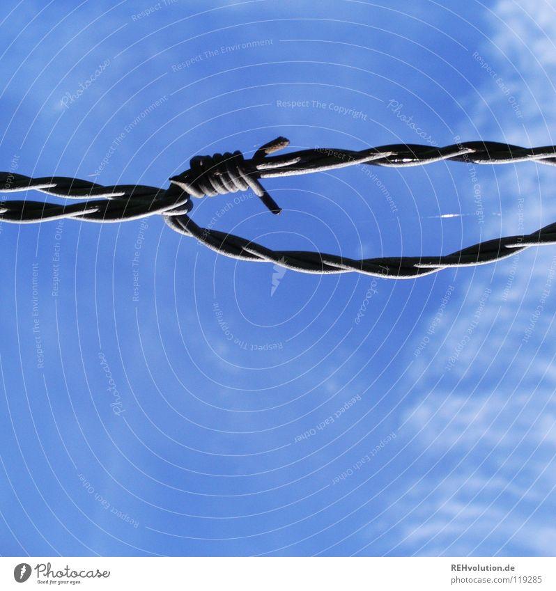 als der himmel noch blau war ... Himmel blau Sommer Wolken Wiese Luft Sicherheit gefährlich Schutz Schmerz Landwirtschaft Grenze Weide Zaun Barriere Vieh