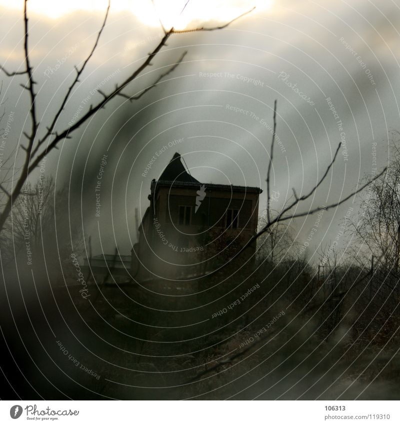 STALKER Natur alt Einsamkeit Haus dunkel Fenster Traurigkeit Erde Stimmung Arbeit & Erwerbstätigkeit Angst Wohnung verrückt gefährlich Industrie bedrohlich