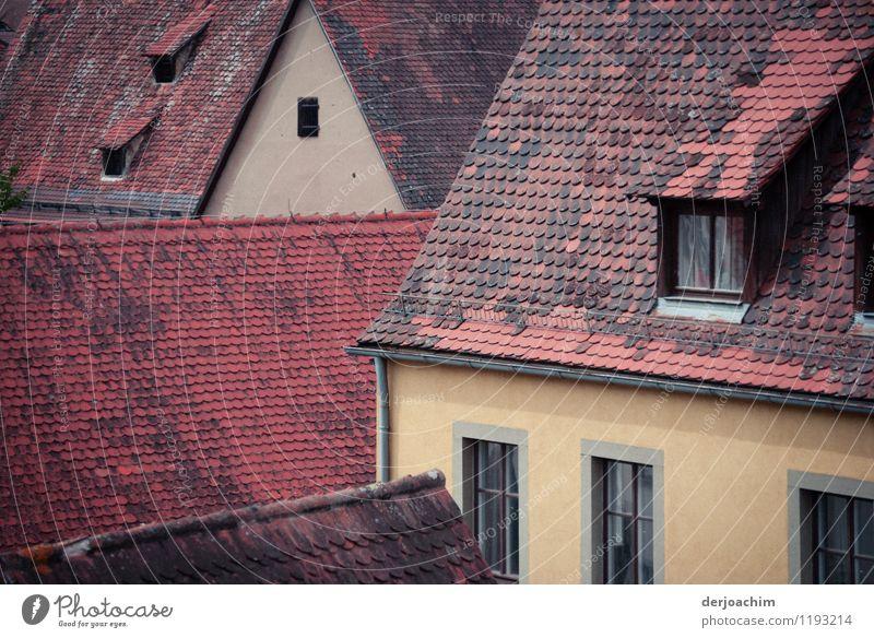 Dach an Dach Stadt schön Sommer Erholung rot Freude Haus Umwelt gelb Senior natürlich außergewöhnlich Stein Deutschland Zusammensein ästhetisch