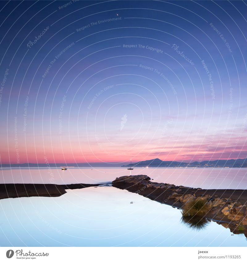 Meeres Stille Ferien & Urlaub & Reisen Ferne Freiheit Sommerurlaub Himmel Horizont Schönes Wetter Küste Segelboot maritim schön blau violett orange schwarz