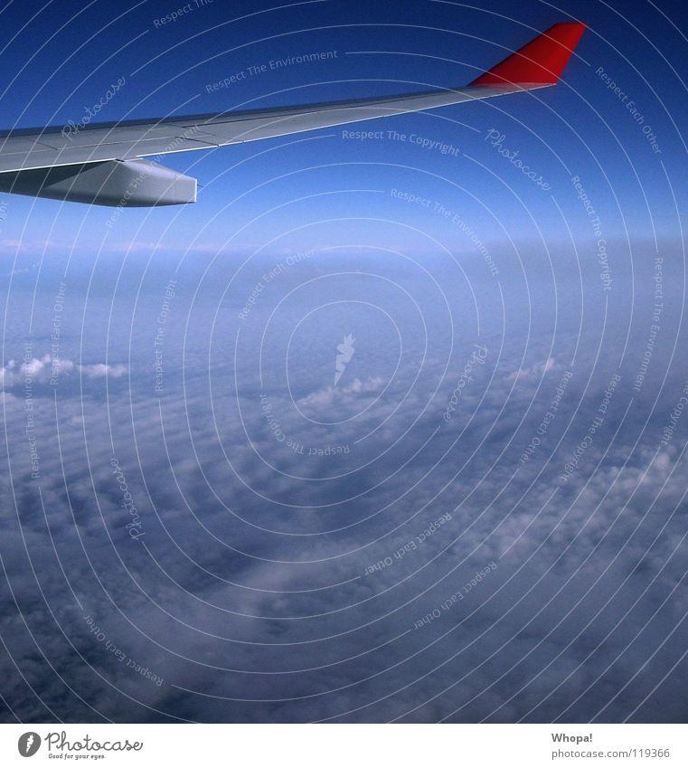 Wegfliegen Wolken Flugzeug weiß Luftverkehr Himmel Flügel blau