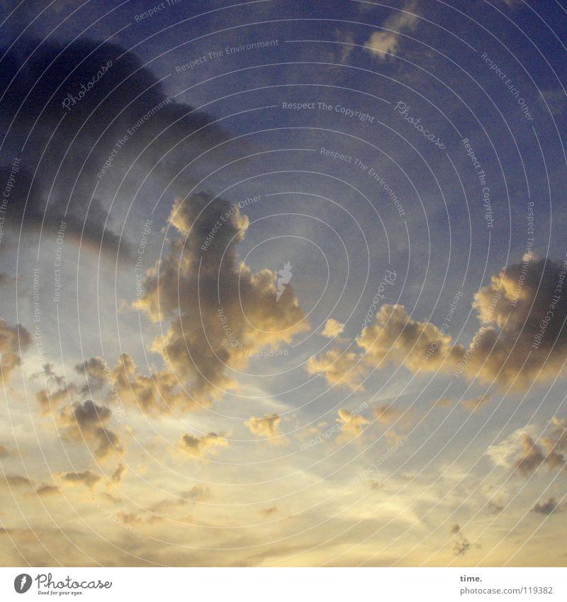 Wide Sky Diving schön Ferne Himmel Wolken Horizont Kraft Macht Fernweh Vergänglichkeit Weltall Spiritualität Anhäufung Sonnenuntergang Herrlichkeit