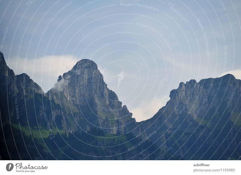Zustoll mit halbem Steibenstoll Natur Baum Landschaft Wald Umwelt Berge u. Gebirge außergewöhnlich Felsen Gipfel Alpen Schweiz steil Felswand Steilwand