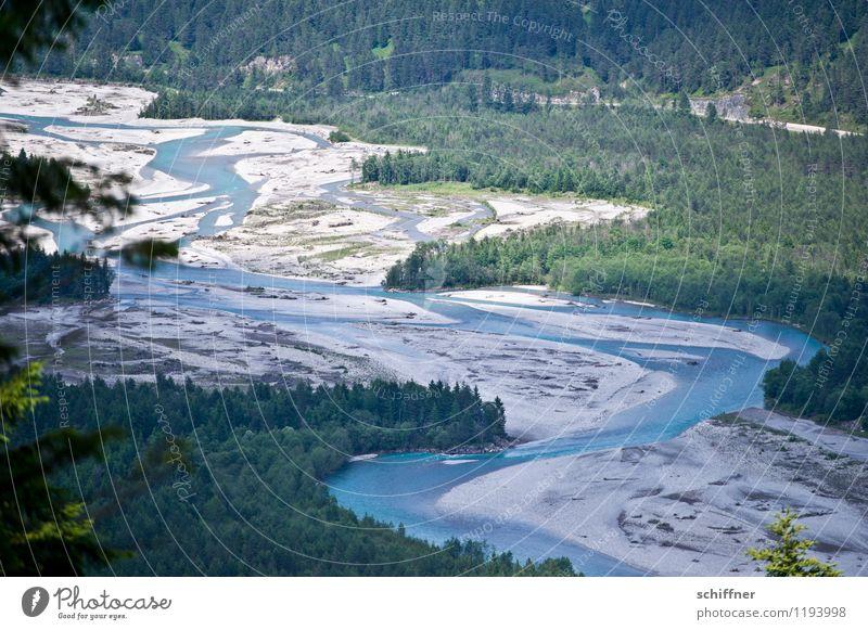 Do lechsd di nida! Natur blau Pflanze grün Baum Landschaft Wald Umwelt Fluss Alpen Bucht Flussufer Umweltschutz fließen Naturschutzgebiet Bundesland Tirol