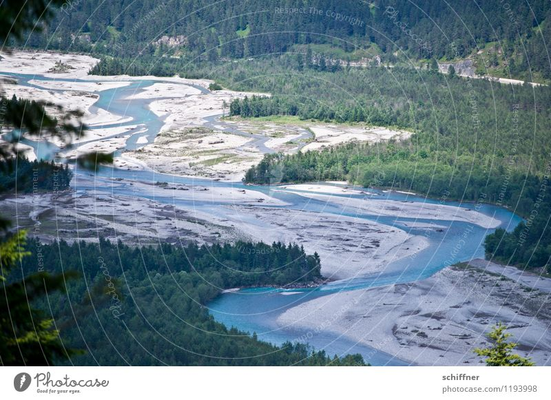 Do lechsd di nida! Umwelt Natur Landschaft Pflanze Baum Wald Alpen Flussufer Bucht blau grün Flußbett Fluss Lech fließen Naturschutzgebiet Umweltschutz
