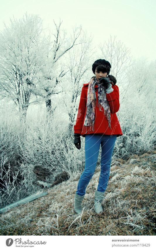 Winter blau rot kalt Schnee Gefühle Eis altehrwürdig