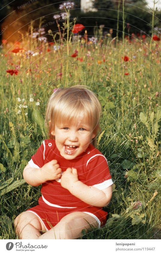 Mohntag Natur Mädchen Blume rot Sommer Freude Wiese Garten Glück lachen Wärme Feste & Feiern Gesundheit lustig blond