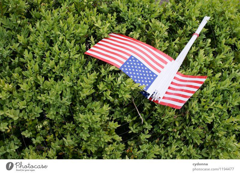 Politikverdrossenheit Natur Sommer Feste & Feiern Freundschaft träumen Sträucher Zukunft Zeichen Macht Glaube Bildung Frieden USA Fahne Vertrauen Veranstaltung