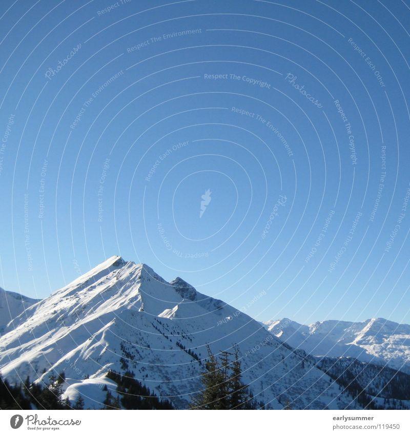 perfect sunday Winter Winterurlaub Skier weiß Gipfel Skigebiet Baum Wald Höhenmeter Österreich Berghang Tiefschnee perfekt Berge u. Gebirge Alpen Blauer Himmel