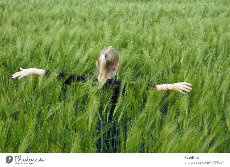 So weich! Mensch Kind Natur Pflanze grün Hand Mädchen Umwelt natürlich feminin Haare & Frisuren Kopf Feld Kindheit frei Arme