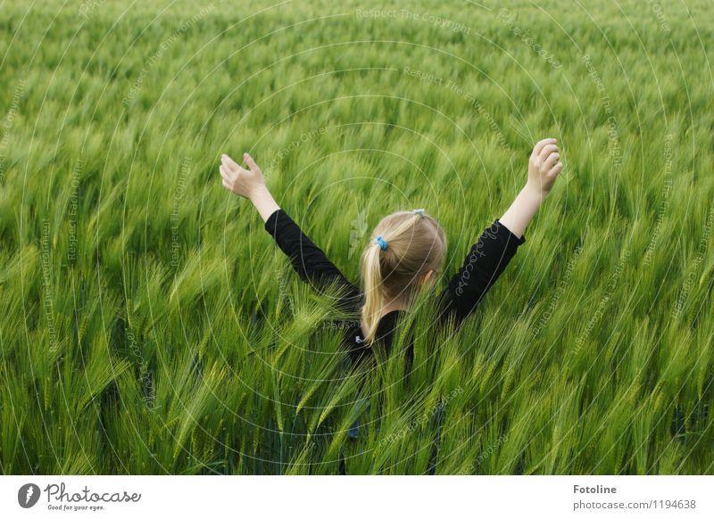 Groß werden? Nein danke! Mensch Kind Natur Pflanze grün Hand Landschaft Mädchen Umwelt natürlich feminin Haare & Frisuren Kopf Feld Kindheit frei