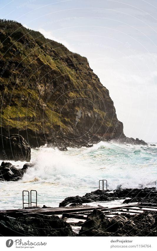 Die Badesaison ist eröffnet Natur Ferien & Urlaub & Reisen Pflanze Sommer Meer Landschaft Tier Ferne Strand Berge u. Gebirge Umwelt Küste außergewöhnlich Felsen Tourismus Wellen