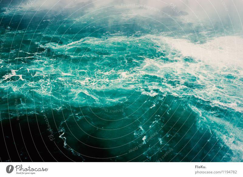 aufgewühlt Umwelt Natur Urelemente Wasser Wellen Fluss Niagara River Wasserfall Niagara Fälle Flüssigkeit nass natürlich wild blau türkis Schaum Gischt