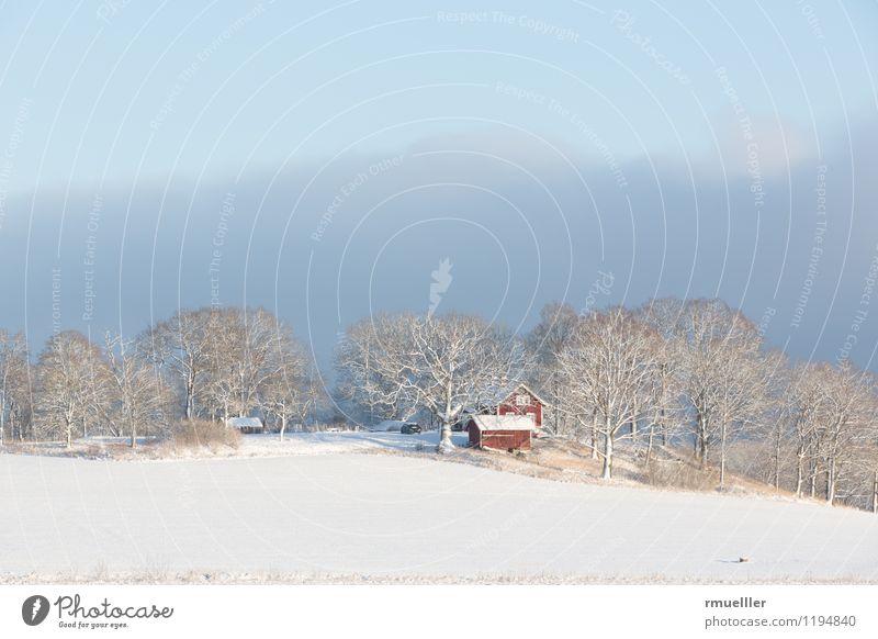 Rote Häuser Himmel Natur Ferien & Urlaub & Reisen blau weiß rot Landschaft Haus Ferne Winter Wald kalt Umwelt gelb Schnee Freiheit