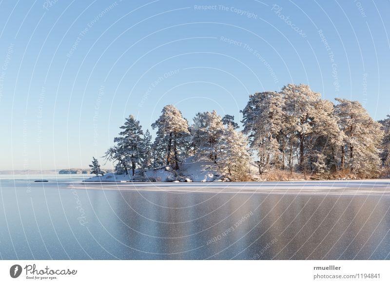 Winterinsel Ferien & Urlaub & Reisen Ausflug Ferne Freiheit Schnee Umwelt Natur Landschaft Wasser Himmel Schönes Wetter Eis Frost Seeufer Insel frei blau braun