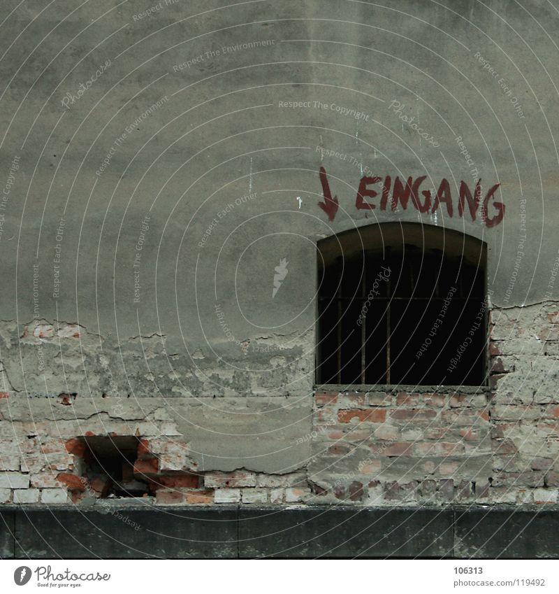 BE BRAVE Eingang Ausgang Ruine verfallen Unbewohnt Haus Wohnung Mauer Backstein Putz abblättern Fenster Gitter geschlossen Wand Schmiererei Graffiti schäbig