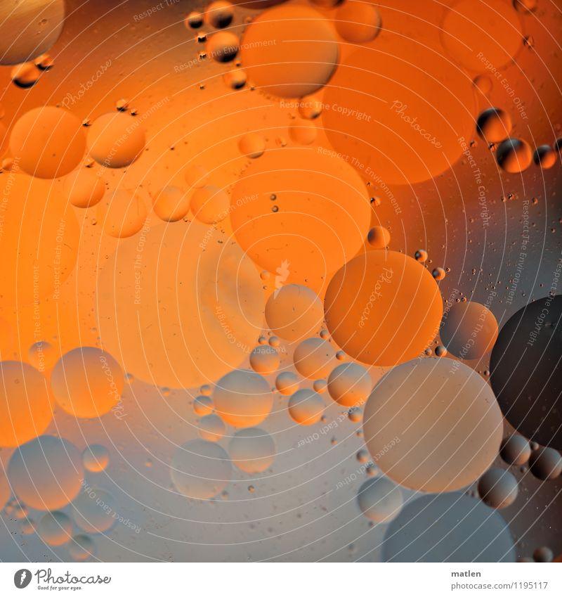 bubbly lll Wasser Tropfen braun grau orange Öl verteilt Blase Benachbart Kugel Farbfoto Nahaufnahme abstrakt Muster Strukturen & Formen Menschenleer Kontrast