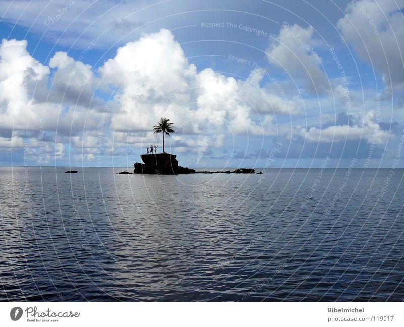 Gestrandet im Paradies!? Palme Baum gestrandet Freitag Wolken Einsamkeit sprechen hilflos winken abgelegen Wasserfahrzeug notleidend Rettung Meer