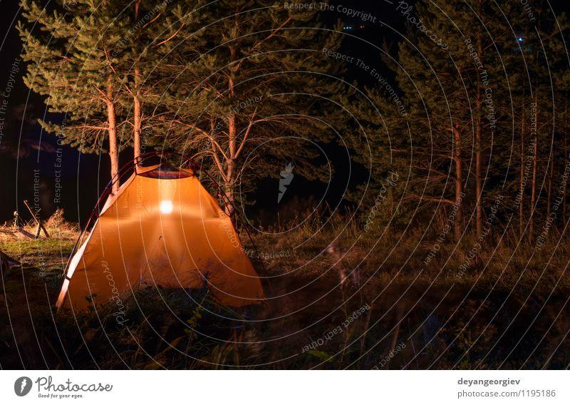 Orange Zelt im Wald Freizeit & Hobby Ferien & Urlaub & Reisen Tourismus Abenteuer Camping Sommer Berge u. Gebirge wandern Lampe Natur Landschaft Wetter Baum