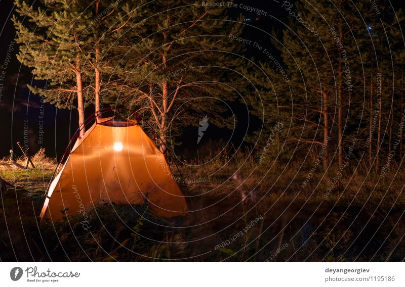 Orange Zelt im Wald Natur Ferien & Urlaub & Reisen Sommer Baum Landschaft dunkel schwarz Berge u. Gebirge gelb Lampe Freizeit & Hobby Wetter wild Tourismus