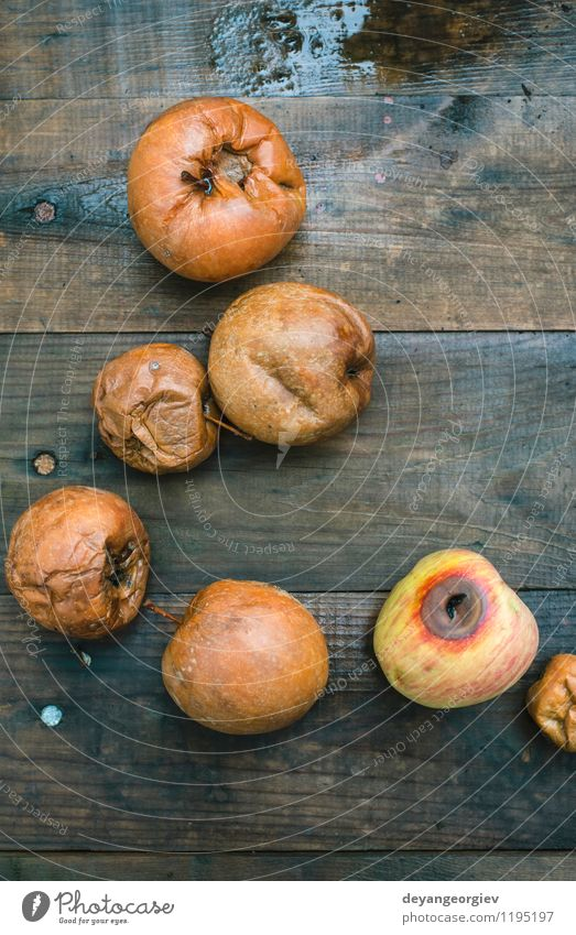 Faule Äpfel auf Holz Frucht Apfel Garten Herbst alt gut natürlich braun rot weiß Tod verfault Lebensmittel schlecht Müll verdorben Hintergrund Kompost hässlich