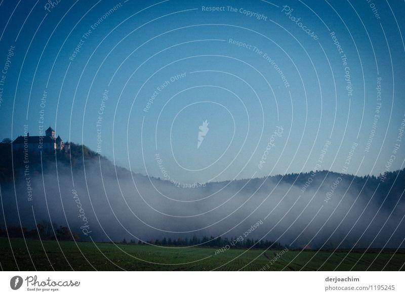 Morgenstunde Freude Erholung ruhig Ausflug Sommer Umwelt Wolkenloser Himmel Frühling Schönes Wetter Gras Wiese Franken Deutschland Menschenleer