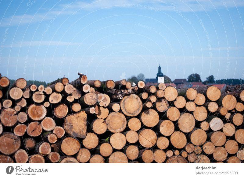 Der nächste Winter kommt b.... Natur Sommer Baum Landschaft natürlich Holz außergewöhnlich braun Deutschland Energiewirtschaft Feld authentisch Ausflug beobachten Kirche einzigartig