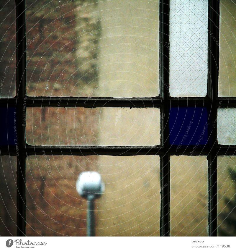 Mengenleere Neukölln Fenster Lampe Haus kaputt Verschiedenheit Geometrie Quadrat Rechteck Baum graphisch Milchglas Durchblick trist grau dunkel Licht