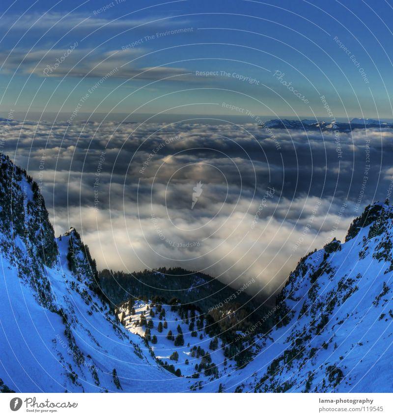 Valley of Clouds Wolken Sonnenstrahlen Nebel Regenwolken Watte über den Wolken Aussicht Skipiste Berghang Schnee Baum Flugzeug Romantik Stimmung träumen