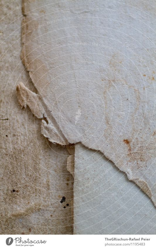 Papier Zettel braun grau schwarz weiß Altpapier altehrwürdig retro veraltet Strukturen & Formen Muster Fleck vergilbt Riss Ecke Verlauf bräunlich ästhetisch