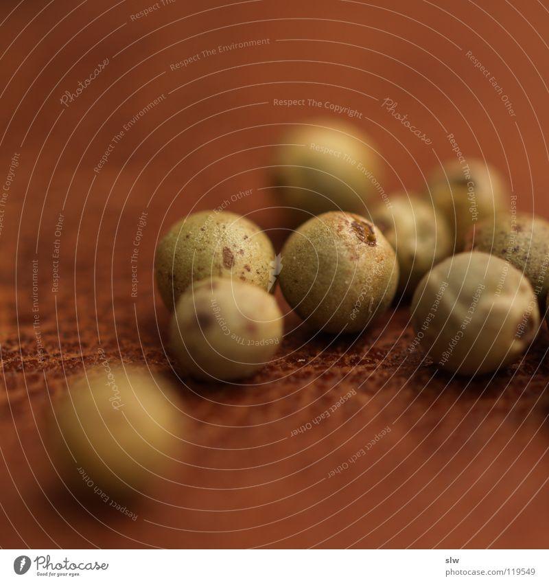 Grüner Pfeffer II Kletterpflanzen lecker Indien Kräuter & Gewürze Produktion kochen & garen Ernährung Korn Pfefferkörner Geschmackssinn Pfefferpflanze