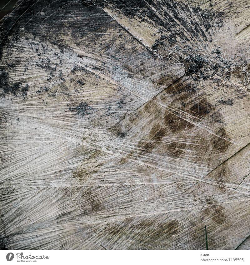 Harter Kern Kunst Kunstwerk Holz alt authentisch dreckig dunkel trist trocken braun grau Maserung holzig Holzstruktur Baumstamm rustikal Holzschnitt