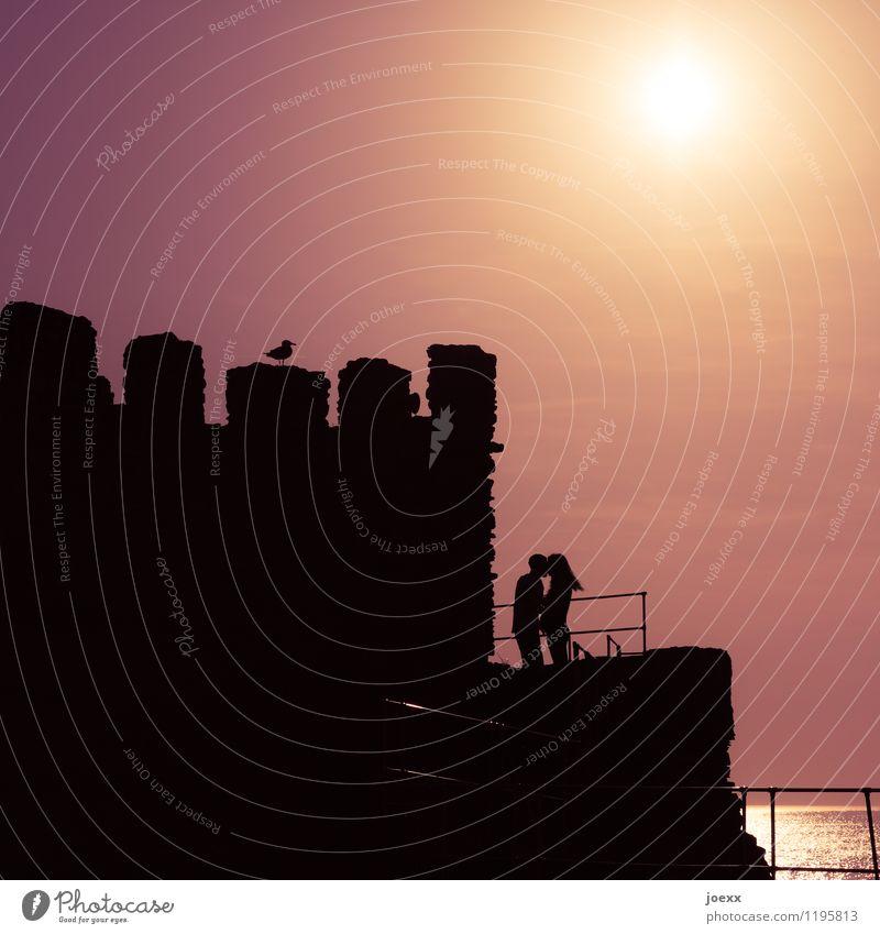 Ein Moment Unendlichkeit Mensch Sommer Sonne Meer schwarz Liebe Gefühle Glück Vogel Paar Zusammensein Horizont rosa Freundschaft orange Kitsch