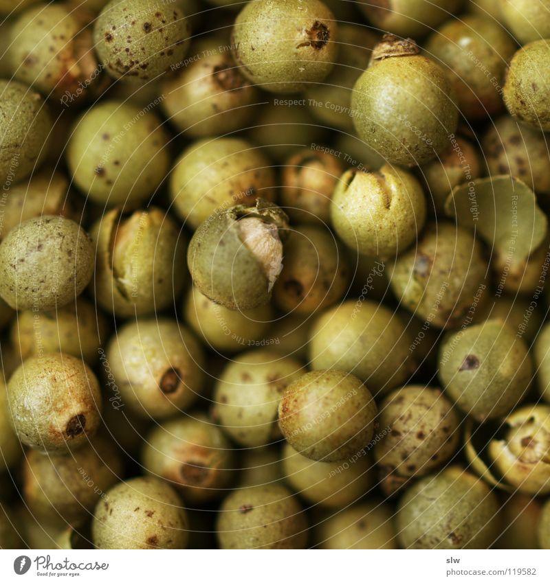 Grüner Pfeffer III Ernährung Kochen & Garen & Backen Scharfer Geschmack Kräuter & Gewürze lecker Indien Korn Produktion Geschmackssinn Kletterpflanzen