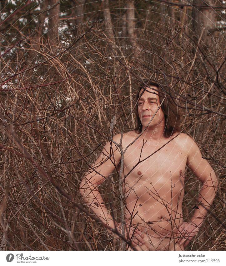 Verwurzelt Mensch Mann Natur Baum Wald nackt Kraft Gesundheit Brust Ast Indianer Naturliebe Amerikaner verwurzelt