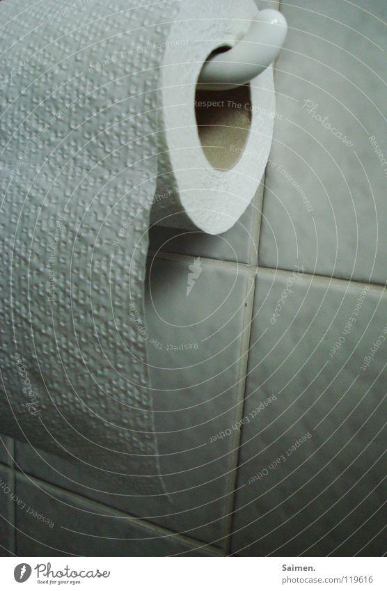 Gute Aussichten Bad Toilettenpapier weiß Halterung Innenaufnahme Klorolle Fliesen u. Kacheln Schatten Freiheit Freude Makroaufnahme