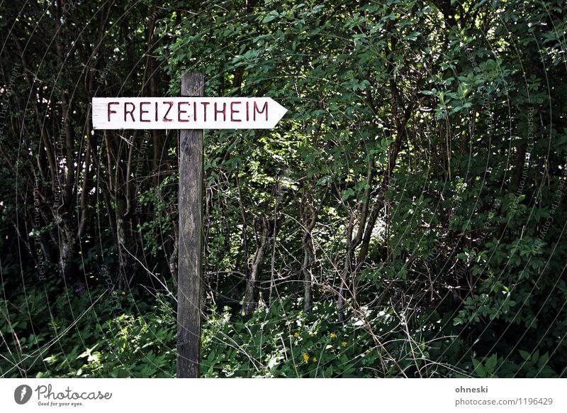Klassenfahrt Ferien & Urlaub & Reisen Freizeit & Hobby Schilder & Markierungen Sträucher Schriftzeichen Ausflug Hinweisschild Zeichen Nostalgie Warnschild