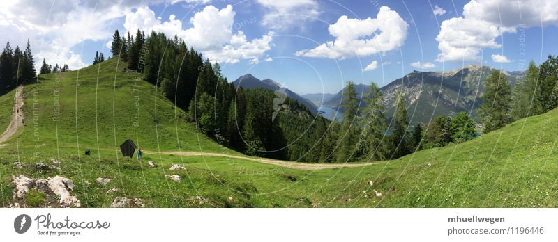 Karwendel am Achensee bei Pertisau Himmel Natur Ferien & Urlaub & Reisen blau grün Sommer Wasser weiß Baum Erholung Landschaft Wolken Wald Berge u. Gebirge