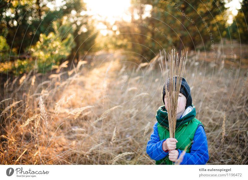 Ich bin dann mal weg Mensch Kind Natur Ferien & Urlaub & Reisen Pflanze Sonne Baum Erholung Landschaft Umwelt Leben Herbst Gras Junge Glück maskulin