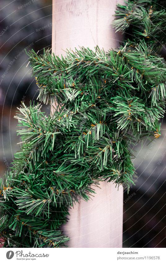 Geschmückt schön grün Sommer Freude Feste & Feiern außergewöhnlich Deutschland Fassade Zufriedenheit leuchten Dekoration & Verzierung ästhetisch Kreativität