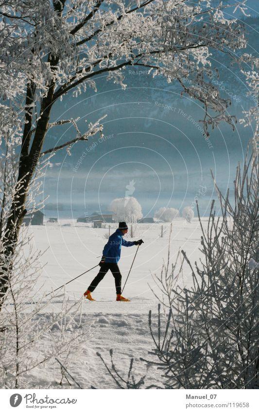 LANGER LAUF Mensch Ferien & Urlaub & Reisen Baum ruhig Winter kalt Schnee Sport Gesundheit Freiheit maskulin Nebel Eis laufen Ausflug Schönes Wetter