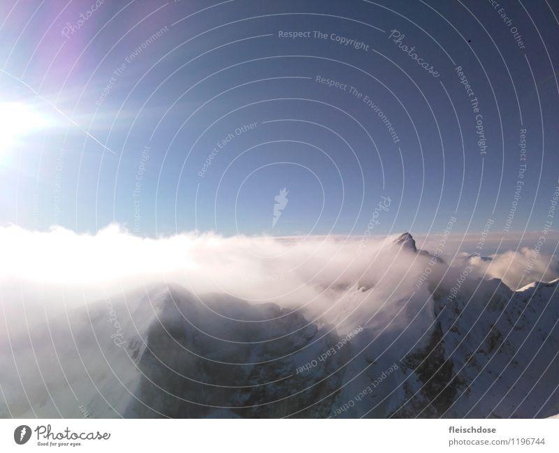 über den Wolken Winter Schnee Berge u. Gebirge Klettern Bergsteigen Landschaft Himmel Sonnenlicht Alpen Gipfel Schneebedeckte Gipfel frei gigantisch