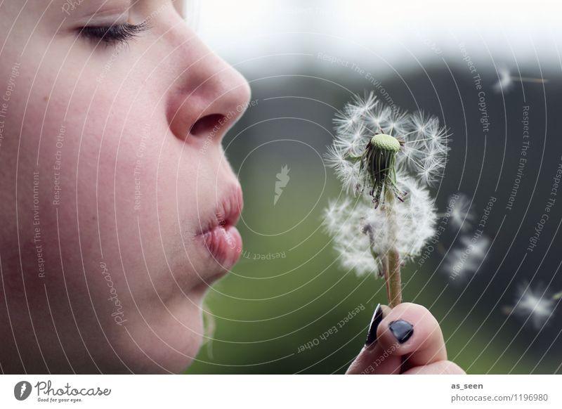 Flieg! Kind Natur Jugendliche Pflanze grün Sommer weiß Erholung Hand Mädchen Umwelt Gesicht Leben Frühling Freiheit fliegen