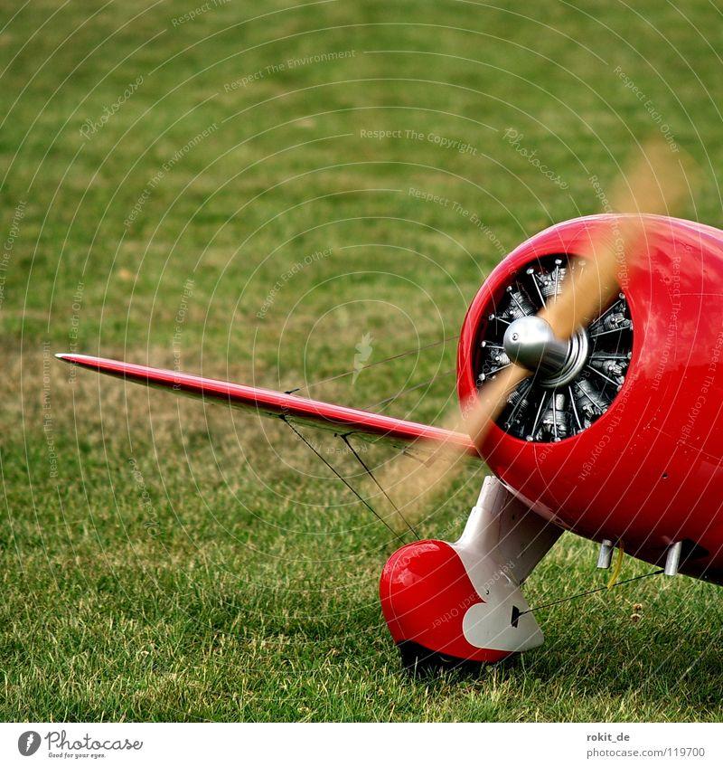 Dicker Brummer grün rot Freizeit & Hobby Flugzeug Geschwindigkeit Luftverkehr Rasen Tragfläche Biene dick Flughafen Rad Flugzeuglandung silber