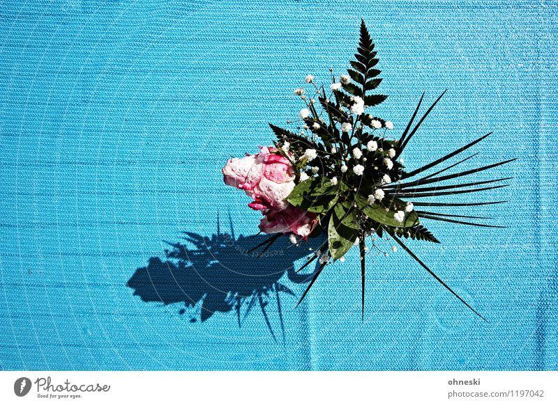 Blümchen Häusliches Leben Garten Dekoration & Verzierung Geburtstag Blume Blüte Blumenstrauß Rose Tischwäsche türkis Geschenk Farbfoto mehrfarbig Außenaufnahme