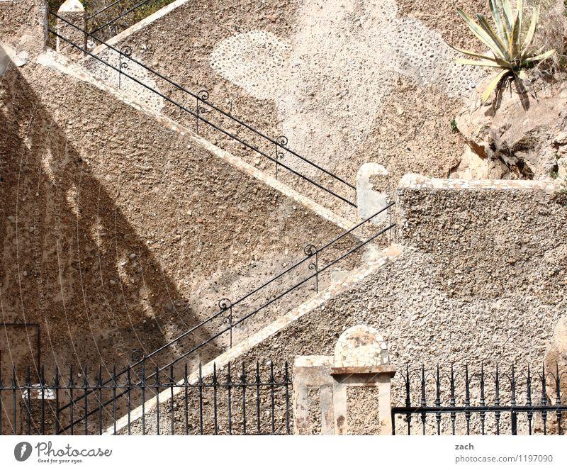 Aufstiegsmöglichkeit Stadt alt Pflanze Wand Wege & Pfade Mauer braun Linie Fassade Treppe historisch Spanien Burg oder Schloss Altstadt Palme Ruine