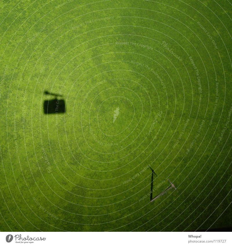 Wasn das? grün Winter Wiese fliegen Kabel Schweiz Koffer Strommast Am Rand Mikrofon Teppich Wäscheleine Seilbahn Rechen Autobahnauffahrt Mixgetränk