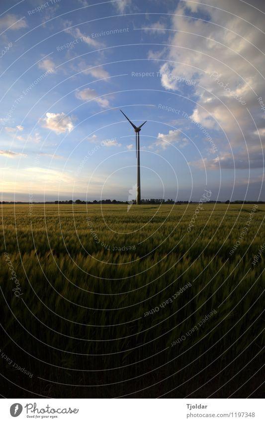 Energiewende Windkraftanlage Energiewirtschaft Erneuerbare Energie Landschaft Pflanze Erde Luft Himmel Wolken Sonne Frühling Schönes Wetter Feld blau grün