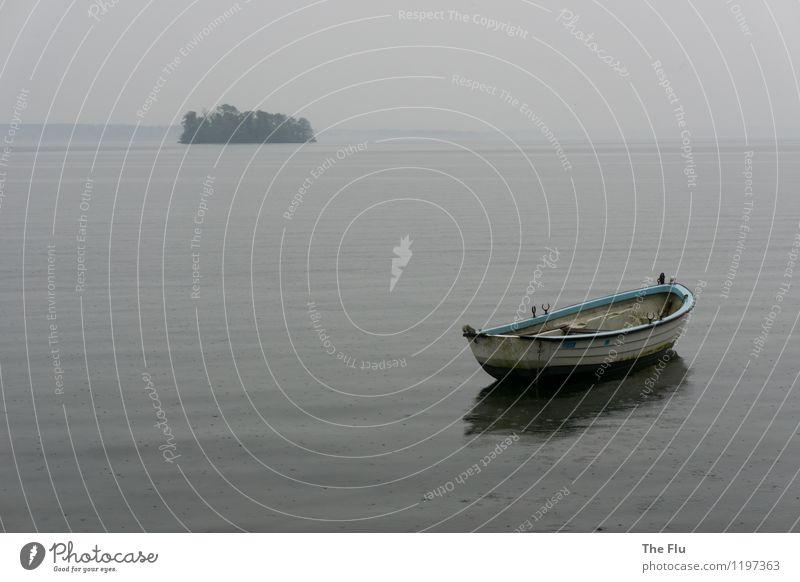 Left out in the rain Wasser Wassertropfen Wolken schlechtes Wetter Regen Seeufer Plöner See Deutschland Menschenleer Bootsfahrt Ruderboot schaukeln