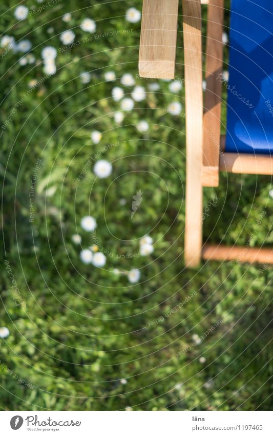 komm schon Rasen Eile Garten Liegestuhl Pause Erholung ausruhend Freizeit & Hobby